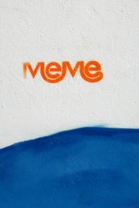 """""""Meme"""" geschreven op een muur in Vredehoek, Zuid-Afrika. Foto door Warenksi"""