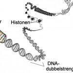 Welkom bij de genomische revolutie